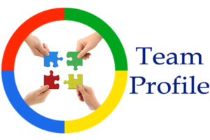 Color Persona Team Profile logo