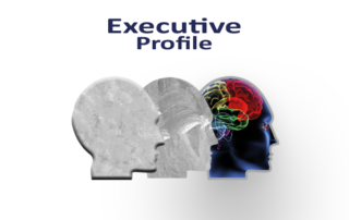 Full Executive Profile Report
