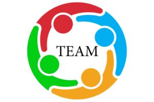 Team Profile